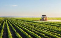 The Need for Sustainable Farming